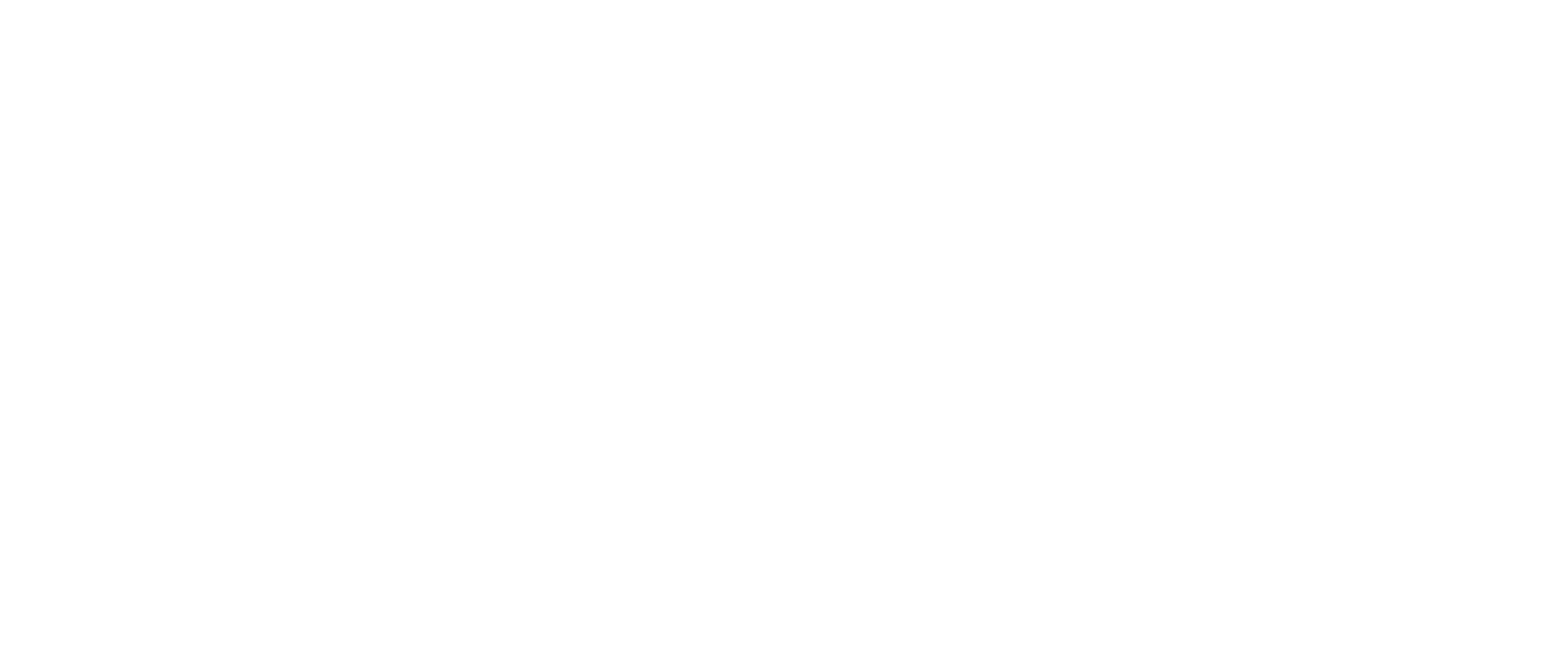 Shannon GVA